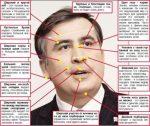 Определение характера по лицу – Физиогномика: определение характера по чертам лица